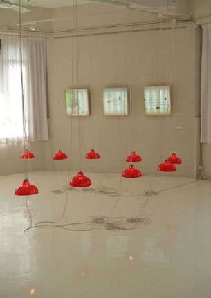 cornelia erdmann solo show. Black Bedroom Furniture Sets. Home Design Ideas