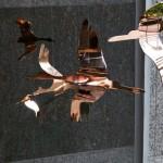 cranes-timesquare_featured